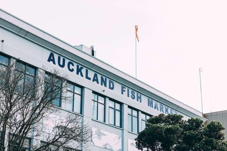Image of the white Auckland Fish Market building during fall.