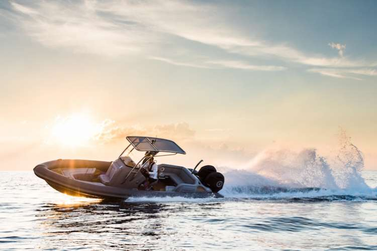 Ribeye tender cruising in the sunset