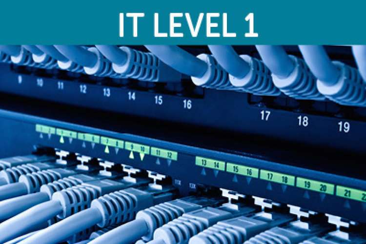 Image of a server rack cabinet with header text: IT LEVEL 1.