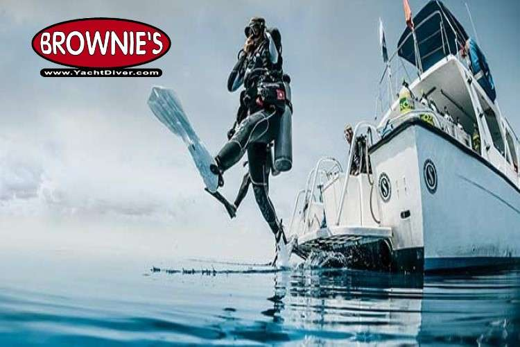 Brownie's logo with a picture of a diver jumping in the sea from a boat