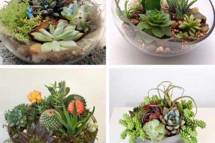 Greent plant arrangements from Ildeval.