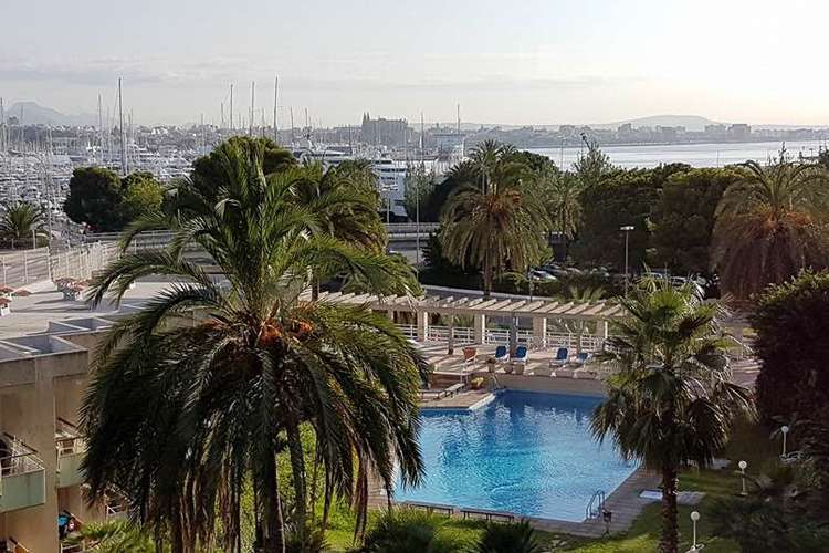 Image of a swimming pool and palm trees with Palma de Mallorca port in the background.