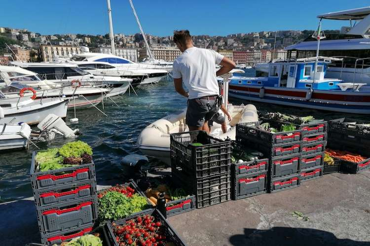 Yacht provisions, fresh fruits and vegetables.