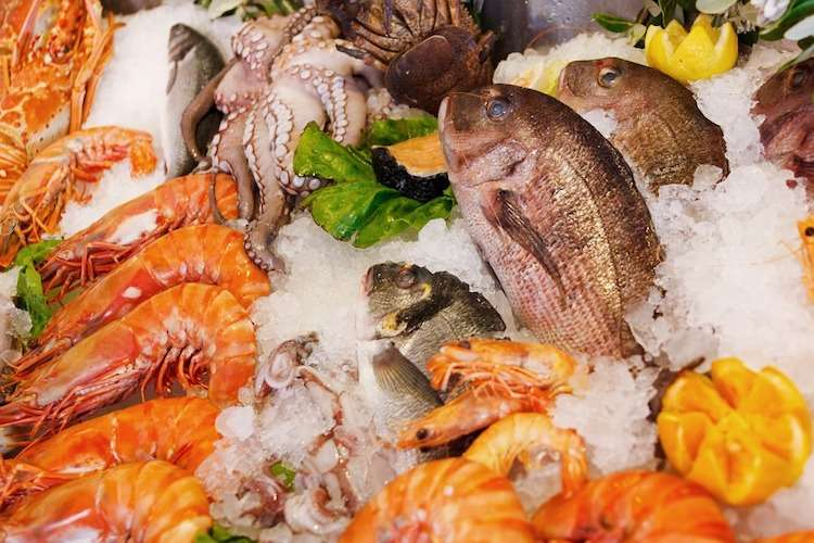 Image of fresh fish, shrimp and octopus